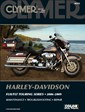 Harley Road King Electra Glide Screamin Eagle